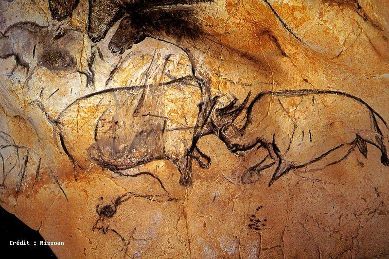 Caverne du Pont d'Arc - Grotte Chauvet
