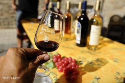 Les vins AOC et IGP